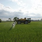 Challenger RoGator spraying spring barley  -  latest nozzle technologies used for precise application
